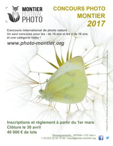 thumbnail_Insertion concours CI 2017